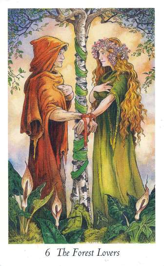 The Forest Lovers, from The Wildwood Taro is a favorite image.